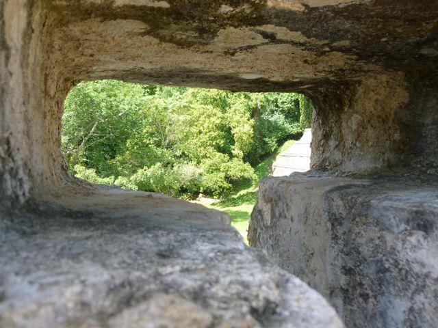 palenque jungle through wall