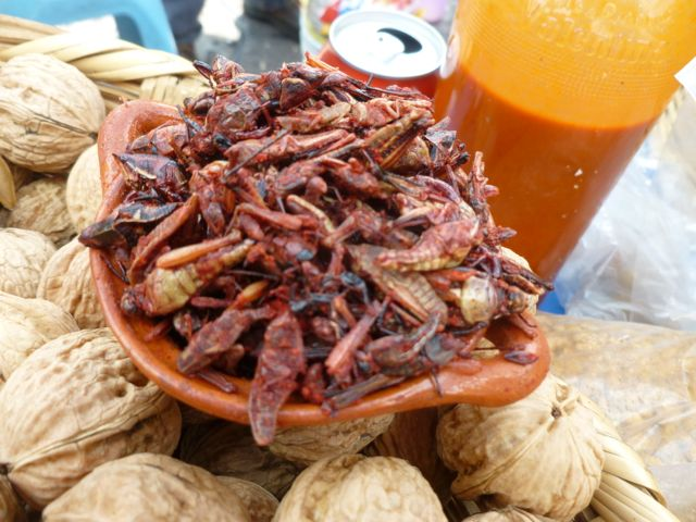 mexico city chapulines chilli grasshoppers