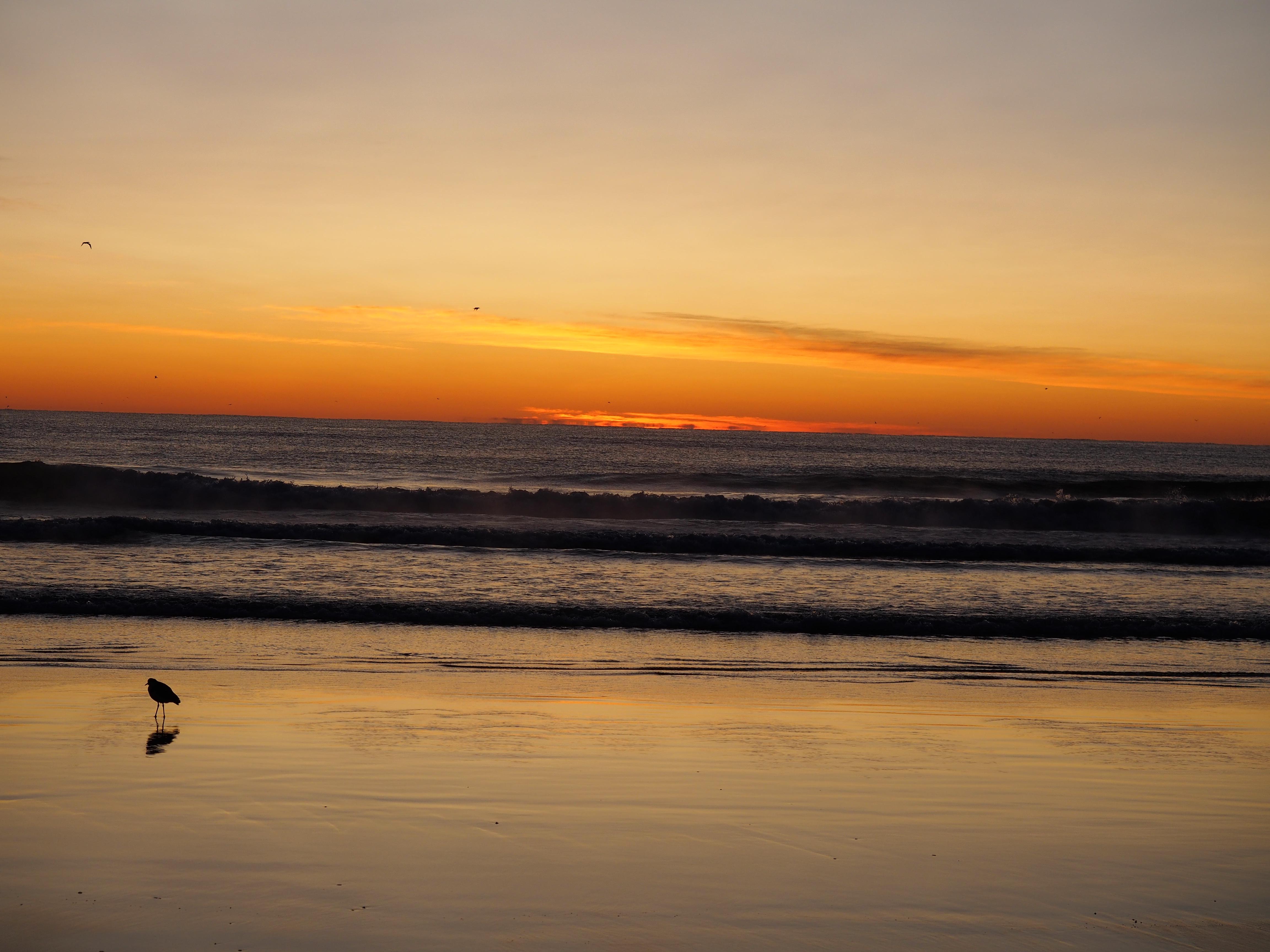 Pambula Beach at Dawn