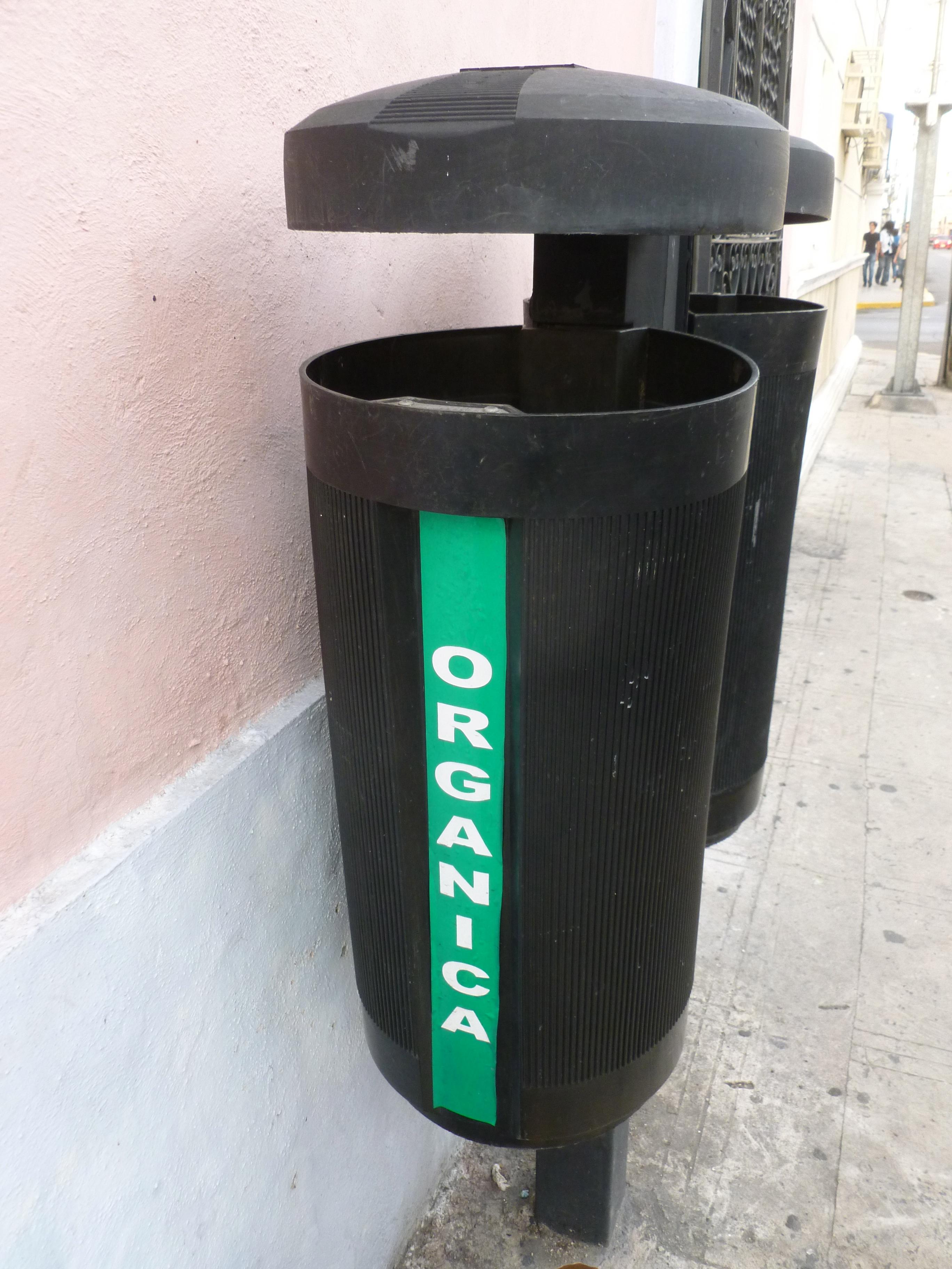 organica bin merida mexico