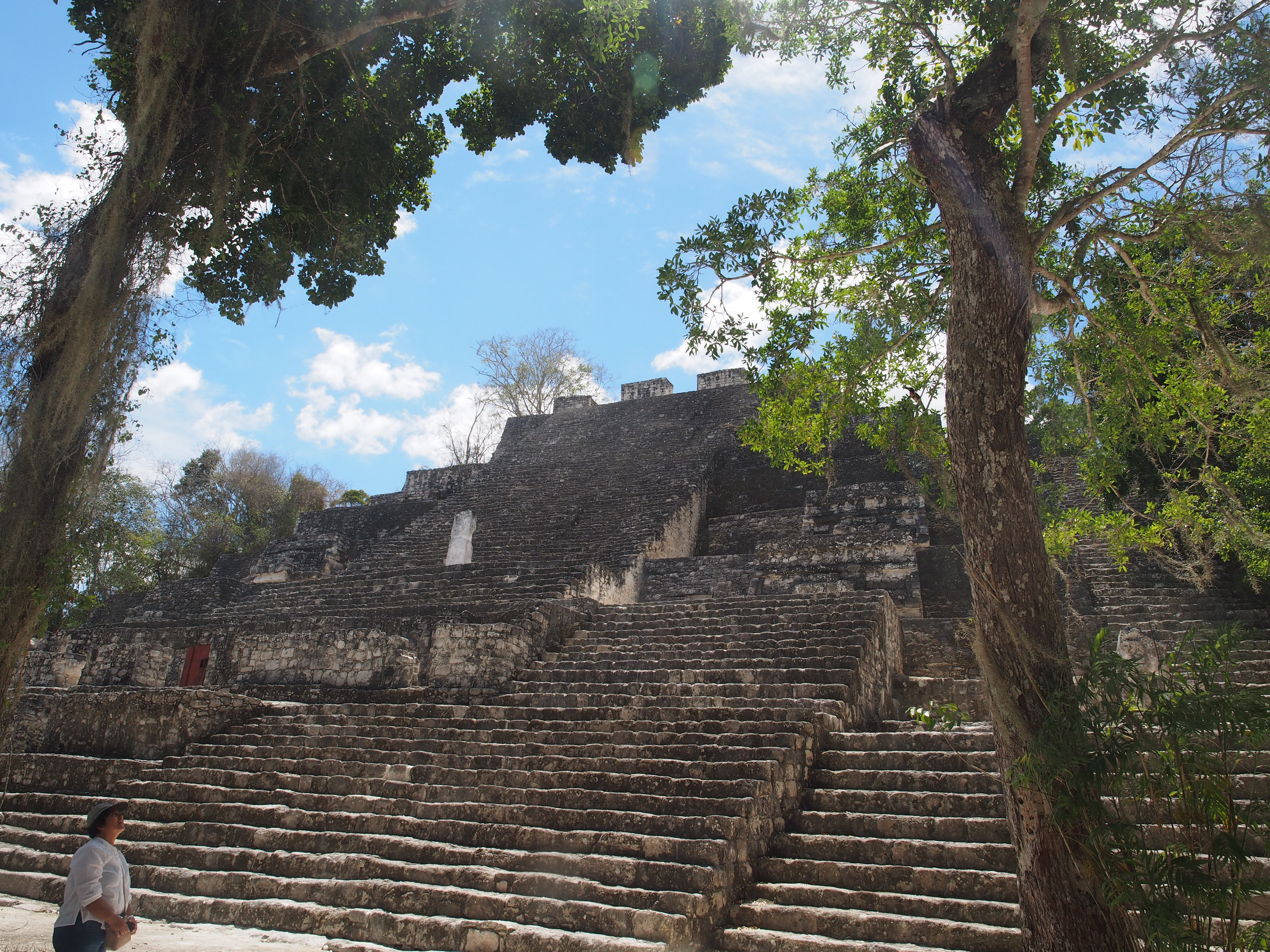 mayan pyramids calakmul mexico