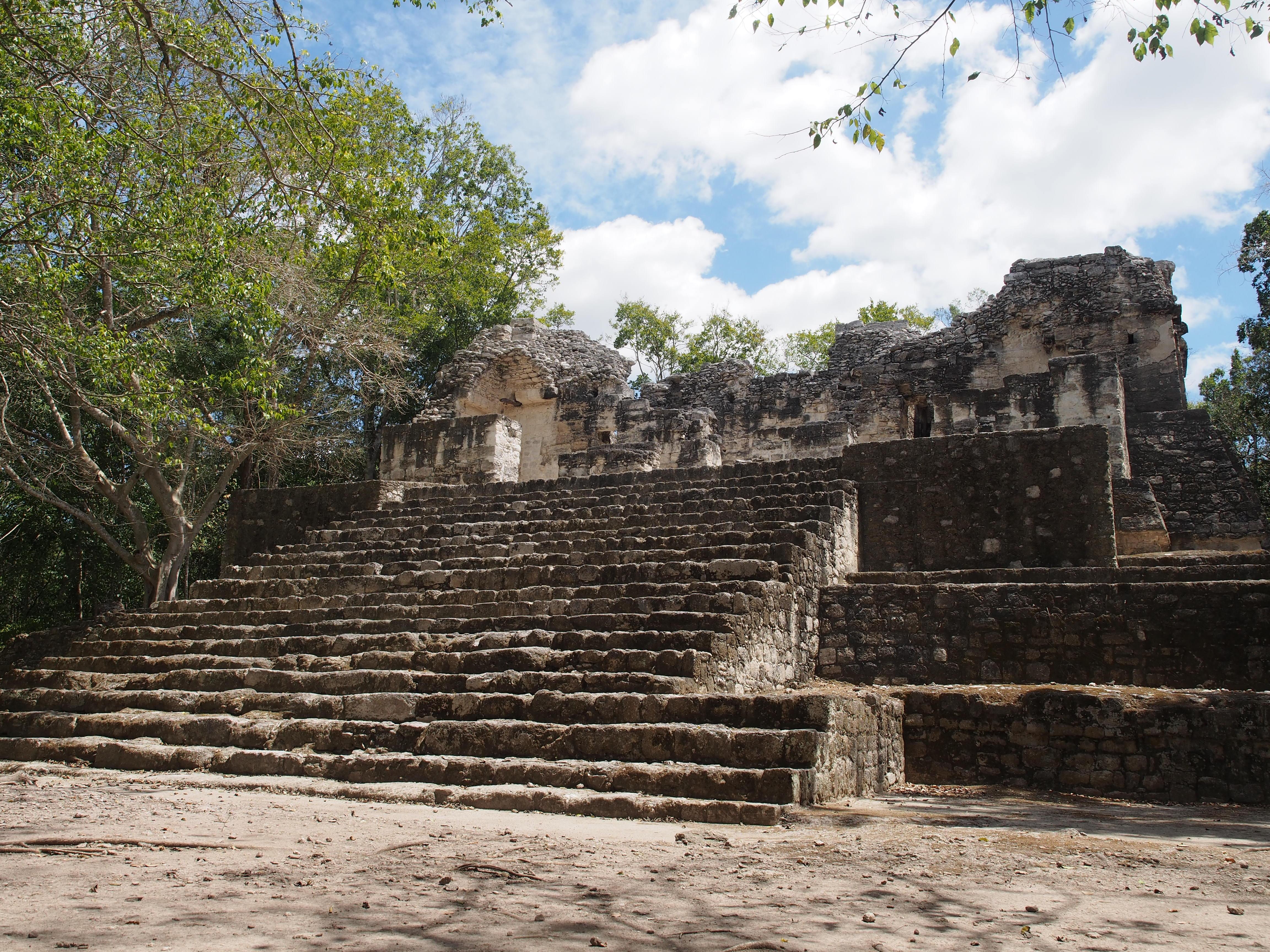 Mayan pyramid calakmul mexico